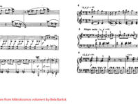 Bela Bartok Mezzo Piano lessons